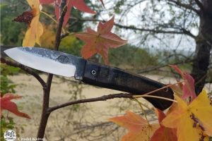 Couteau de poche Citadel Aizto Autumn