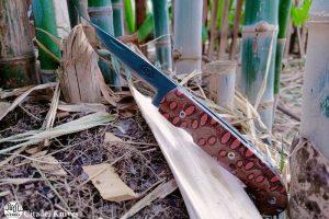 Pocket Knife Citadel Danang #2 banksia