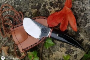 Knife Citadel Papoose Buffalo Horn
